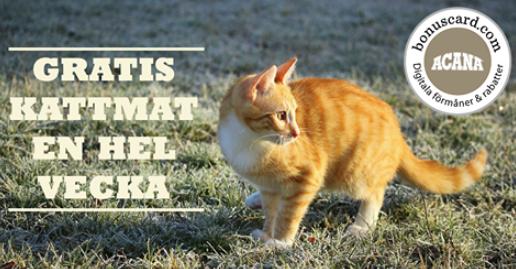 Gratis kattmat från Acana