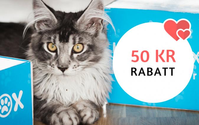 50 kr rabatt Kattbox